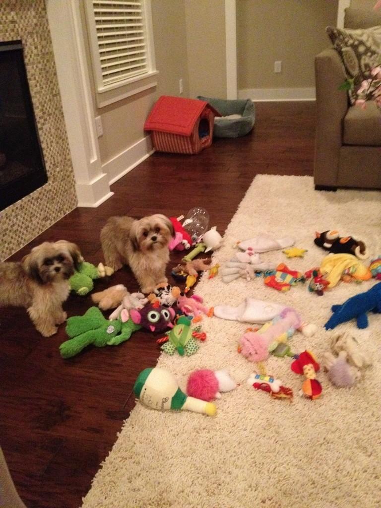 1. 你的地板會有一堆娃娃。