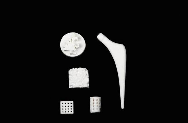 27.) 骨頭