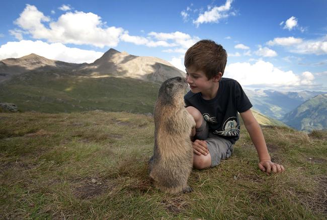 迪士尼卡通情節!小男孩山裡頭結交土撥鼠,他還把後代介紹給他!