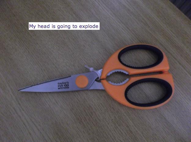 36. 一把需要剪刀才能剪開的剪刀。(啊啊啊啊啊!)