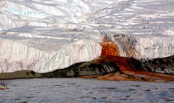 22. 淌血的冰川:在南極(Antarctica),氧化的鐵會讓水看起來是流出來的血,這血被稱為「血瀑布」(Blood Falls)。