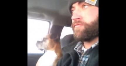 這支影片雖然只有6秒鐘,但裡面狗狗被主人拍一下胸口之後的「黑社會」反應真的太經典了。
