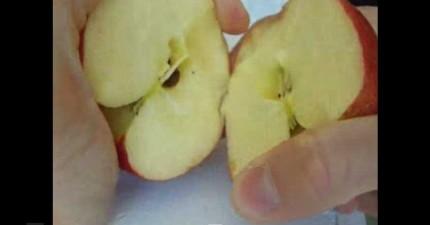 你不會相信可以徒手切開一顆蘋果,直到你看過這支影片。
