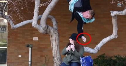 這些人掛在樹上,變成拯救大學生的忍者。
