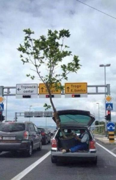 30個你會很慶幸不在你身邊開車的荒唐人。