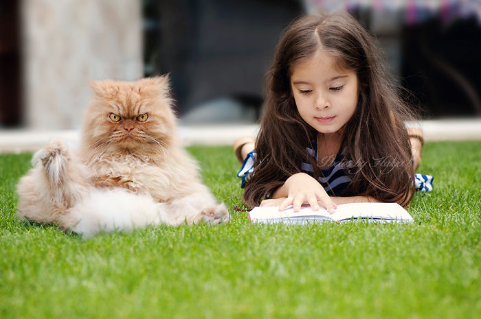 讓我來介紹Garfi,他就是全世界最「生氣」的貓咪。怎麼這麼可愛啊?!