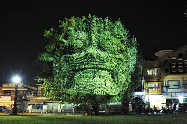 26. 投影將樹木變得像是怪物。