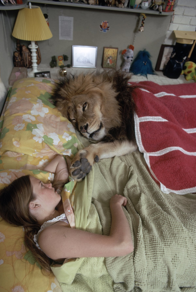 這家人養了史上最霸氣的無敵寵物。看到他們之間的互動後會讓妳也想養一隻抱著睡覺!