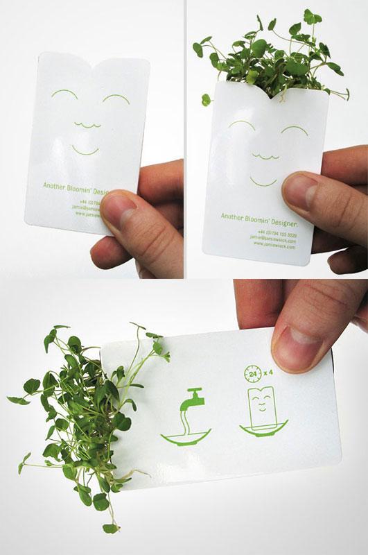 13.) 來種點植物。
