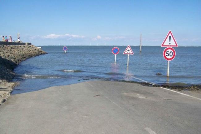 如果你的車子是水陸兩用的、或是你執意想要往前,只少還有這些被淹一半的標誌,可以告訴你路在哪裡。