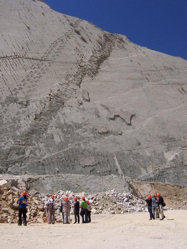 墙上有很多不同恐龙的足迹,甚至是暴龙 (Tyrannosaurus Rex) 幼龙,他的足迹走了超过347公尺。(人类发现过最长的恐龙足迹。)