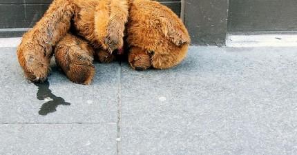 主人回家發現可愛的泰迪熊娃娃被竊賊性侵了!警察利用泰迪熊體內的線索抓到了有史以來最怪的竊賊。