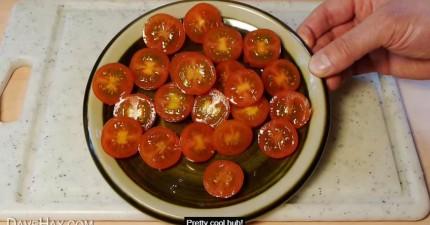 想要一次把一整盤小番茄全部對切原來這麼簡單!你會發現用處真的太多了!