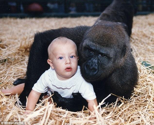 照片中,是一隻叫做Djalta的大猩猩,是她在英國肯特一個野生動物園會一起玩耍的對象。他們會擁抱、磨鼻子、親吻對方、嗅聞對方的氣味,也就是動物之間很親暱的行為。