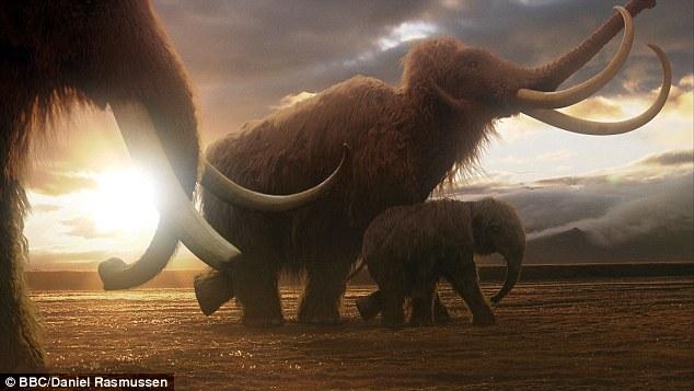 人類科技真的太可怕了!居然將要複製這個冰河時期的傳奇巨獸!