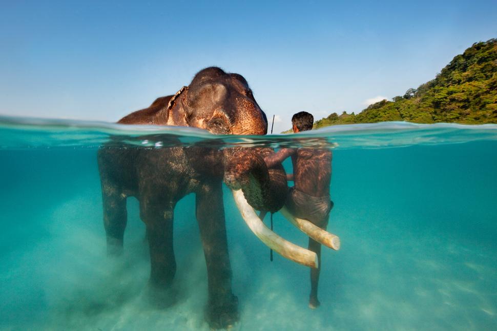 印度 安達曼群島 Andaman Islands, India