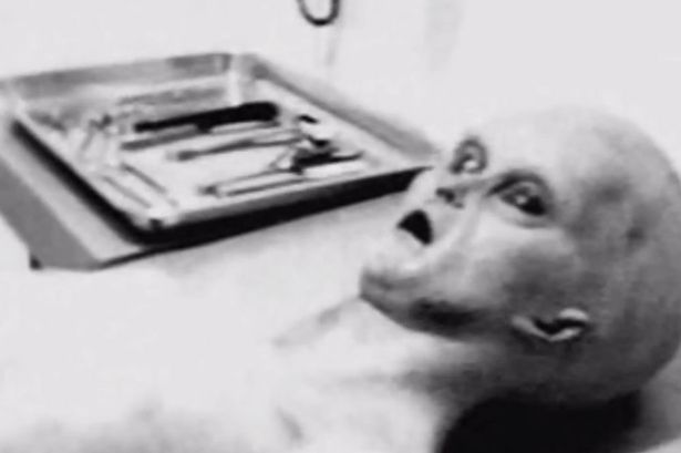 Tom相信這個生物有1.2公尺高,頭看起來很像是昆蟲。這個外星人的屍體,頭部已經被切斷、也有部分的解剖、內臟的部份被移除,也被做好了防腐的處理。