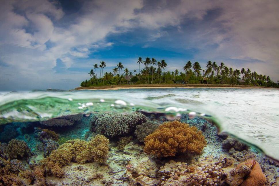 印尼 弗洛勒斯海 Flores Sea, Indonesia