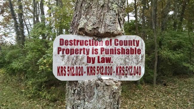牌子明明寫了「在國家財產上建設是可以法律處以罰則的。」但這棵樹硬生生地長出來,把牌子給吃地了。
