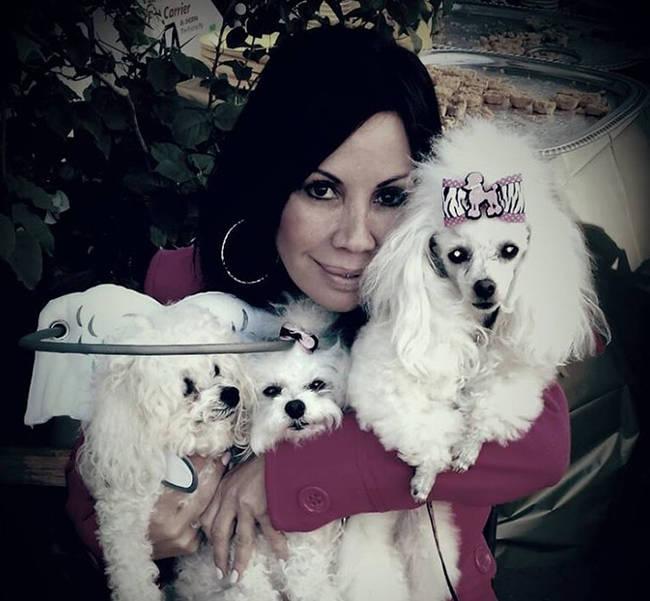发明者Silvie Bordeaux她13岁的狗狗失明了,狗狗可能因此会撞上墙壁或是摔下楼梯,让她必须要想办法帮助她的宝贝狗狗。