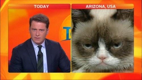 澳洲(Australia)一名脫口秀男主持人Karl Stefanovic,以滑稽的主持風格聞名,怎麼說他滑稽呢?從他曾經在節目上訪問過紅遍網路的臭臉貓(Grumpy Cat)就知道了...