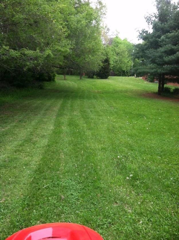 然後美好的一天,就結束在把雙腳踩進剛用割草機除過草的柔軟草皮上吧!