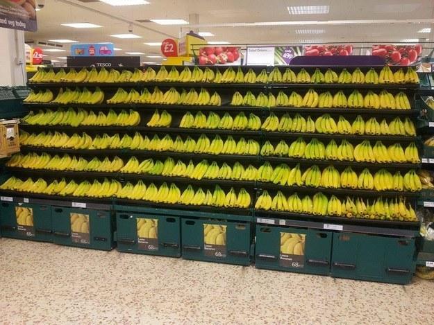 天哪,我覺得自己似乎有點缺鉀...還好架上有很~多香蕉可以讓我補充營養!
