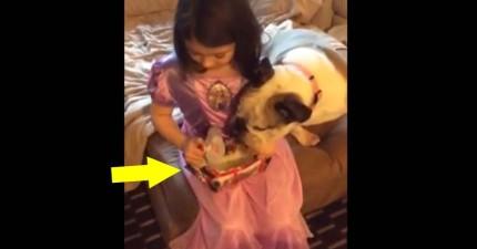 小女孩聖誕節想要《冰雪奇緣》的娃娃,結果爸爸真的從冰箱拿出了...