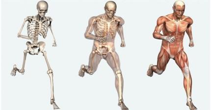 22個關於人體的奧祕,會看得你很佩服自己!