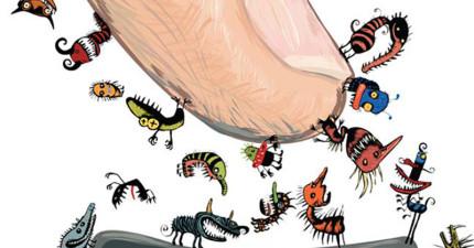 你不會猜到,其實這14個才是生活中病菌最多的地方。