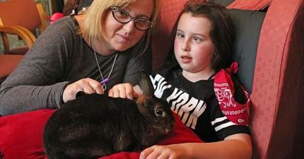 這一家人悲痛地失去了癌症的小女兒,卻在聖誕節收到了來自天國的奇蹟。