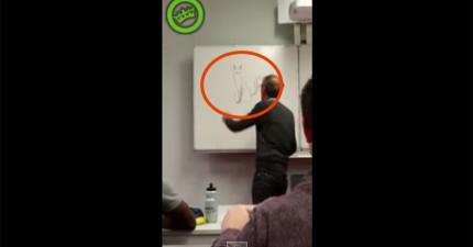 老師在白板上發現有學生「畫了一隻貓」 擦掉後全班笑翻了