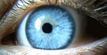 12個關於人類眼睛的驚人真相。