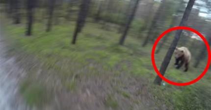 這個男生被一隻巨大棕熊追殺,驚險畫面全都記錄下來了!