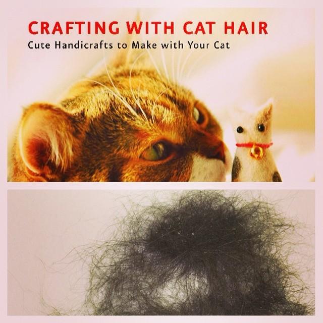 24. 说好都用宠物的毛来编一些可爱的手工艺,但事实却是残酷的...