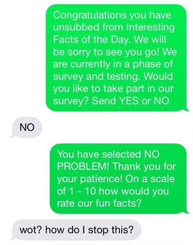 這個人收到了一封詐騙簡訊,結果他機智的反擊讓對方不停求饒。