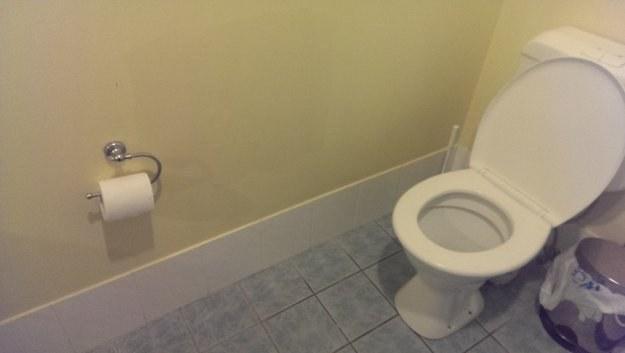24. 這間廁所大概是專為設計的長臂人吧...