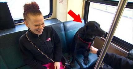 這隻狗狗每次等主人等得不耐煩就會自己去搭公車去她最愛的地方。乘客:「她是個人!」