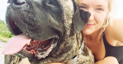 在得知愛犬罹患骨癌後,她列出這張遺願清單然後一同踏上一段令人一陣鼻酸的感動旅程!