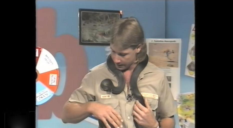 鱷魚先生在1991年的節目裡被蛇咬,他被咬後的反應會讓你超懷念他!