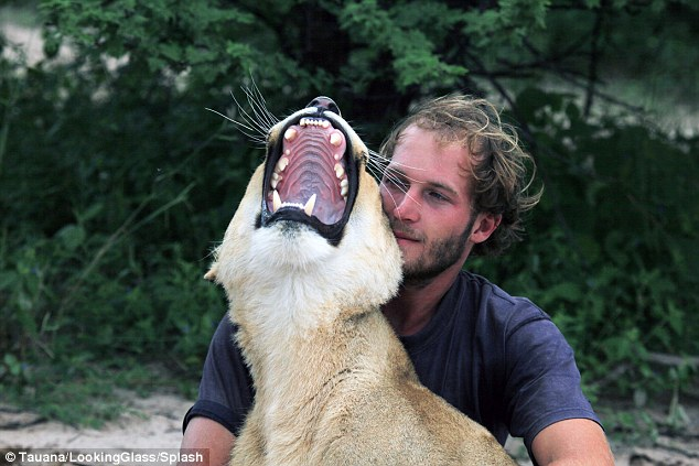 Best buds: Conservationist Valentin Gruener, 27, raised Sirga after she was abandoned by her price
