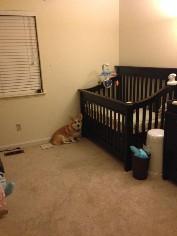 He even started sleeping beside her crib, making sure she's protected.