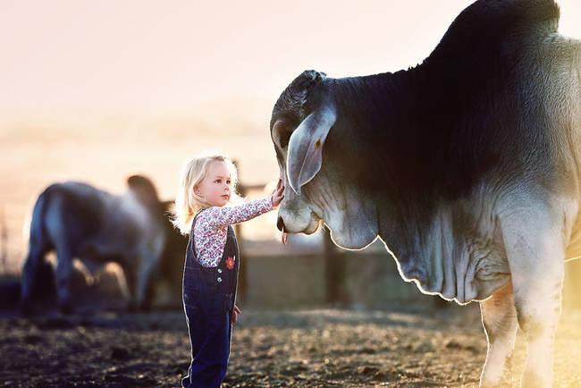 "42.) This precious little girl girl who has <a href=""http://www.viralnova.com/girl-bulls/"" target=""_blank"">brahma bulls for besties</a>."