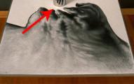 這幅藝術作品看起來很普通,直到你把一個圓柱鏡子放在它前面。瞬間變成空前的神作!