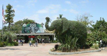 一頭公象硬闖動物園做出比人類偶像劇還要浪漫的事情。