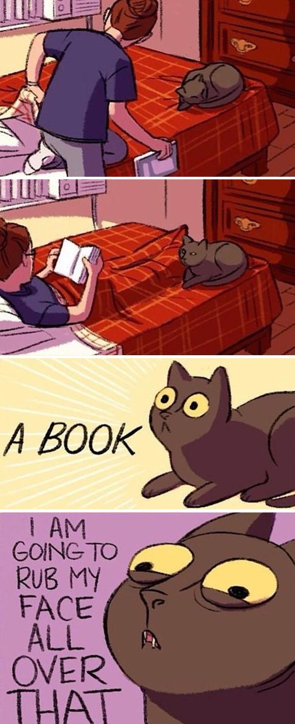 有時候對書情有獨鍾。