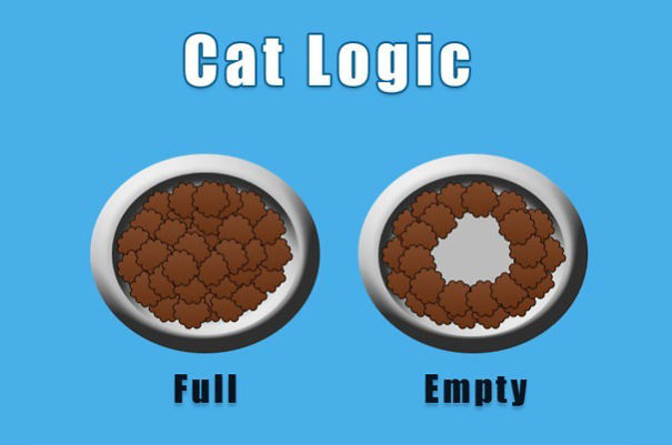 貓咪的邏輯也令人難以理解。