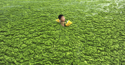 10張中國環境污染的照片讓你看到那裡的狀況比你想像的還要嚴重10倍!