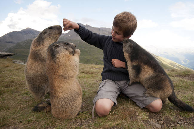 """37.) This little boy who takes annual treks to visit his <a href=""""http://www.viralnova.com/matteo-and-marmots/"""" target=""""_blank"""">marmot best friends</a>."""
