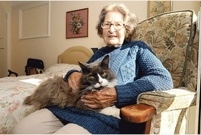 """39.) This loyal cat who wouldn't leave her owner's side, even when the owner <a href=""""http://www.viralnova.com/cat-owner-reunite/"""" target=""""_blank"""">left her with friends to move in to a nursing home</a>."""